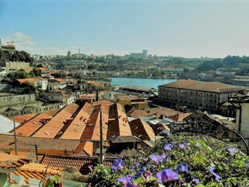 Apartment T2 / Porto, Cedofeita, Santo Ildefonso, Sé, Miragaia, São Nicolau e Vitória