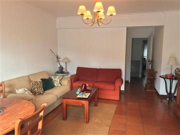 Appartement T3 / Setúbal, Avª Luisa Todi