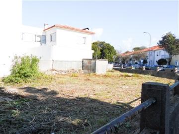 Casa / Porto, Amial