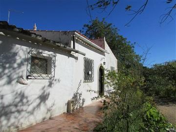 Detached house / Faro, Bordeira