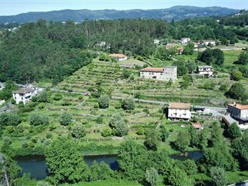 Ferme / Vila Verde, Coucieiro