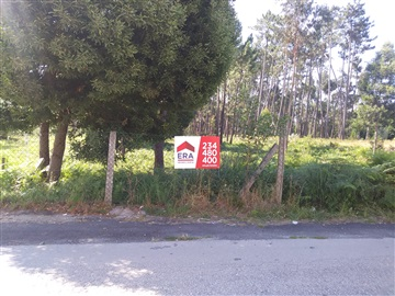 Lot / Aveiro, Cacia