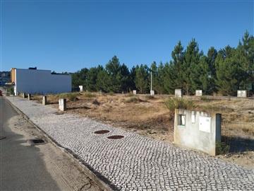 Lot / Palmela, Quinta do Anjo