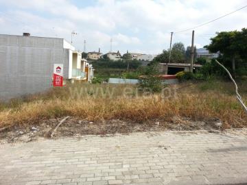 Lote / Braga, Dume