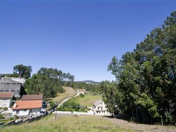 Lote / Braga, Vimieiro