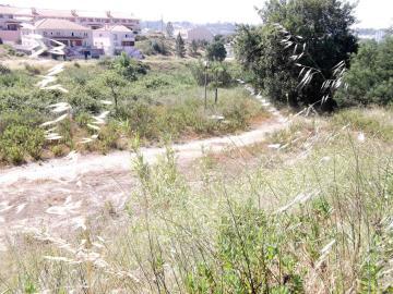 Lote / Santarém, Alto do Bexiga