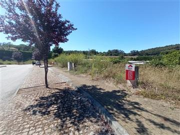 Lote / Vila Nova de Famalicão, Oliveira (Santa Maria)