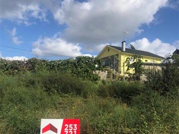 Lote / Vila Verde, Soutelo