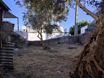 Moradia / Castelo Branco, Castelo