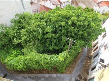 Plot / Coimbra, Alta
