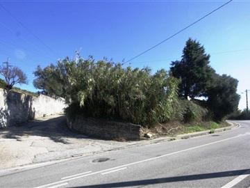 Plot / Coimbra, Antanhol