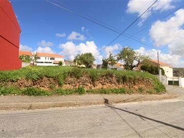 Plot / Torres Vedras, Freiria