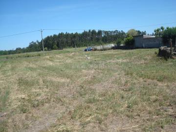 Plot with ruin / Montemor-o-Velho, Viso - Arazede