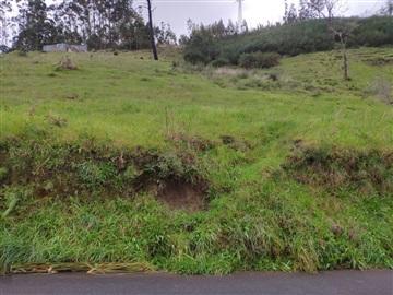 Rustic Plot / Santa Cruz, Camacha