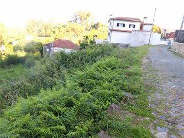 Terrain à bâtir / Barcelos, Quintiães e Aguiar