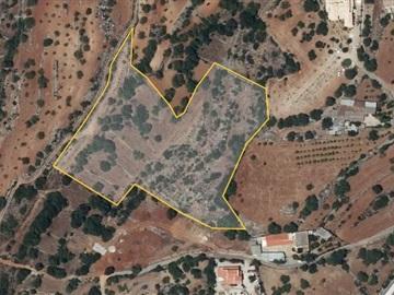 Terrain à bâtir / Faro, Conceição e Estoi