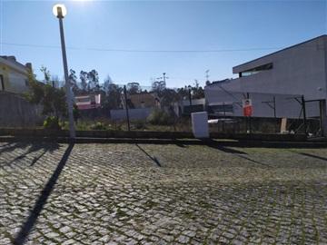 Terrain à bâtir / Maia, Nogueira e Silva Escura