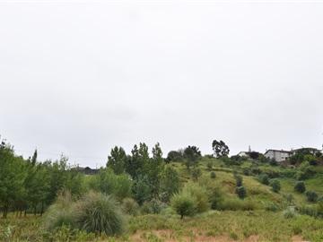 Terrain / Coimbra, Pedrulha