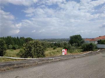 Terrain / Mangualde, Mangualde, Mesquitela e Cunha Alta
