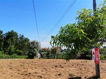 Terrain rural / Tondela, Parada de Gonta