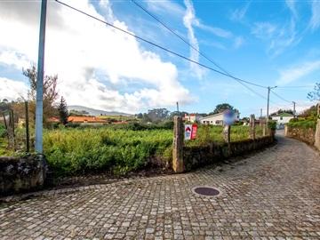 Terreno / Caminha, Seixas