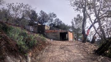 Terreno com ruina / São Brás de Alportel, São Brás de Alportel