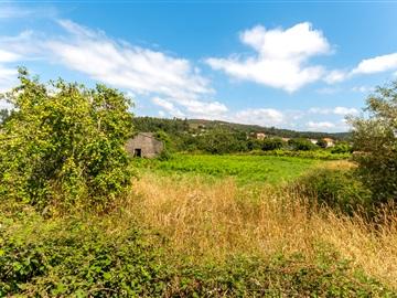 Terreno com Ruína / Vila Nova de Cerveira, Candemil e Gondar