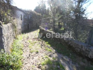 Terreno / Fafe, Monte e Queimadela