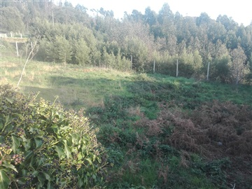 Terreno / Gondomar, Baguim do Monte - Vale Ferreiros
