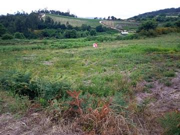 Terreno para Construção / Amarante, Figueiró (Santiago e Santa Cristina)