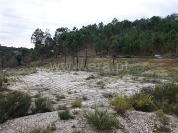 Terreno Para Construção / Amarante, Lufrei