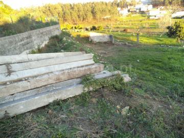 Terreno Para Construção / Barcelos, Tamel (Santa Leocádia) e Vilar do Monte