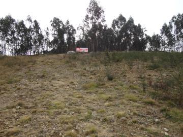 Terreno Para Construção / Ponte de Lima, Anais