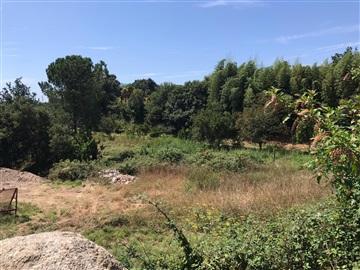 Terreno para Construção / Vila Nova de Famalicão, Lemenhe, Mouquim e Jesufrei
