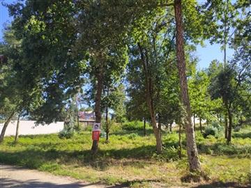 Terreno Para Construção / Vila Verde, Cabanelas