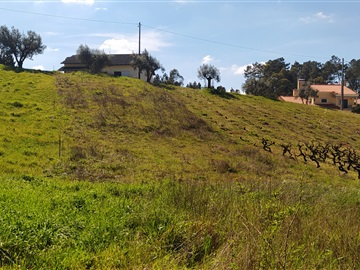 Terreno Para Construcción / Ourém, Gondemaria e Olival