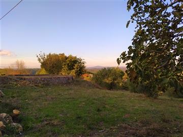 Terreno Para Construcción / Tomar, Sabacheira