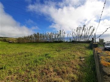 Terreno / Ponta Delgada, Feteiras