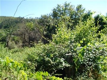 Terreno / Póvoa de Lanhoso, Sobradelo da Goma