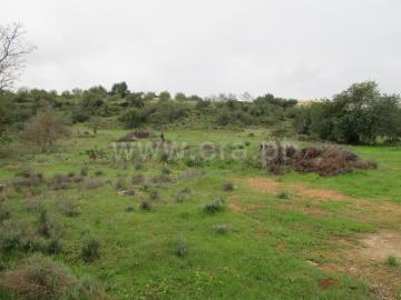 Terreno Rústico / Loulé, Vale Judeu