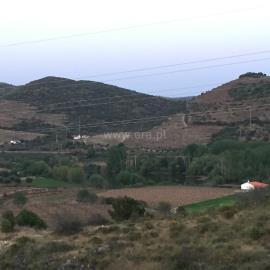 Terreno Rústico / Torre de Moncorvo, Felgar e Souto da Velha