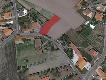 Terreno Urbano / Murtosa, Bunheiro