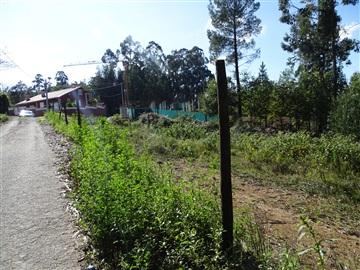 Terreno / Vila Verde, Ribeira do Neiva