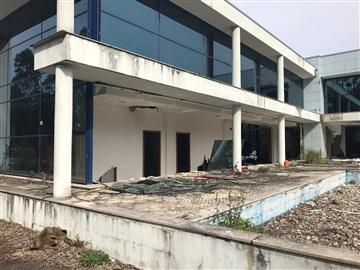 Warehouse / Oliveira de Azeméis, Loureiro